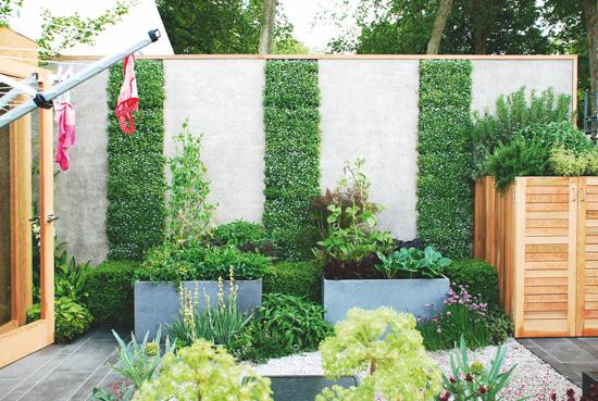 绿篱墙手绘效果图